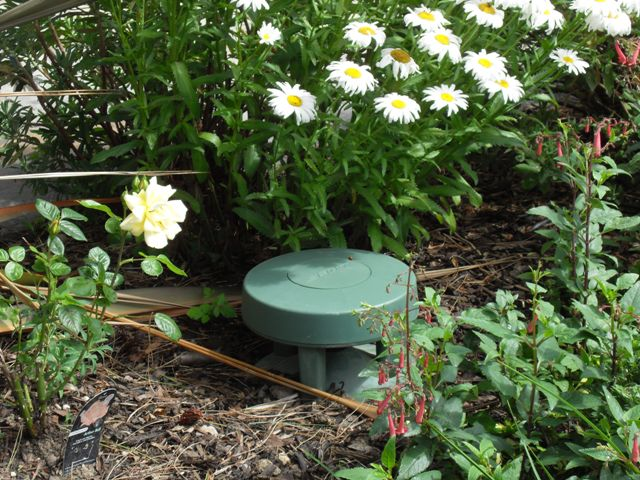 WiFi Controlled Music System for Garden